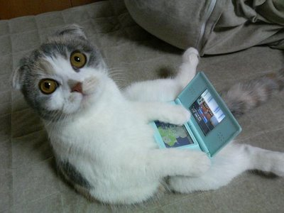 cat-playing-video-games